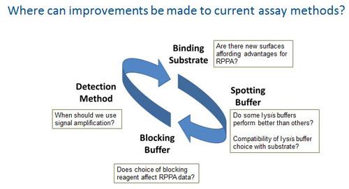 RPPA cycle