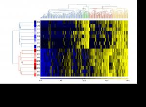 Anti-glycan IgM repertoires in newborn human cord blood